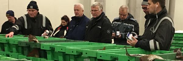 Nu rammer Coronavirussen også de danske fiskere på pengepungen