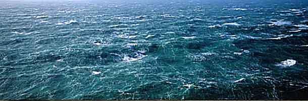 Styrket kontrol af udenlandske fiskere på vestkysten