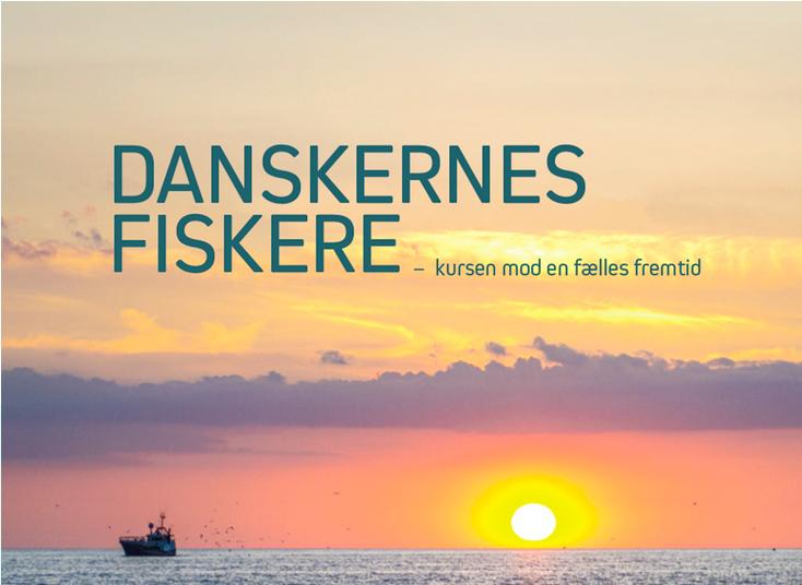 Fiskeriforening vil have færre fiskefartøjer i Danmark