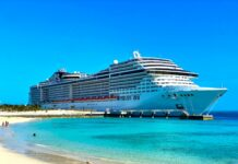 Shipping Group MSC Wants World's First Hydrogen Cruise Ship