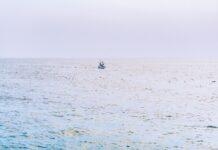 Skibbrud - 17 migranter druknet ud for Tunesien
