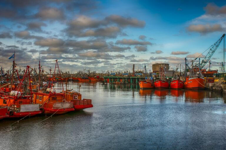 Argentina Port to Use Blockchain for Maritime Purposes