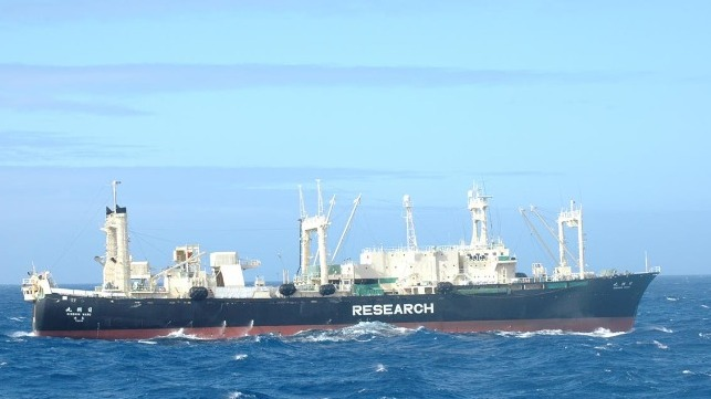 Cost of new Japanese whaling ship may put an end to cetacean slaughter